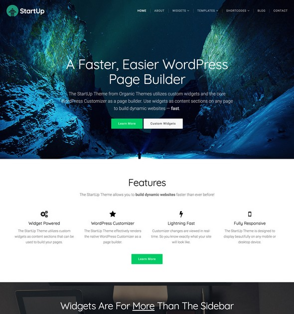 Organic Themes – StartUp